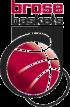 Escudo Brose Baskets