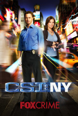 C.S.I. NY (T7)