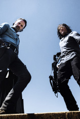 The Walking Dead (VOS) (T8)