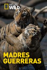 Madres guerreras