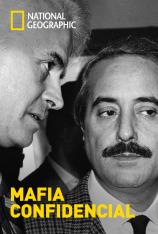 Mafia confidencial