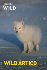 Wild Ártico
