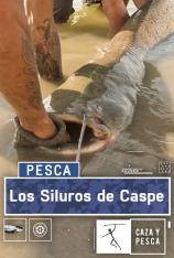 Los siluros de Caspe
