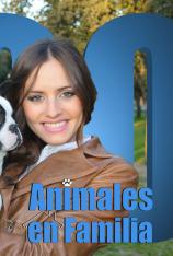 Animales en familia