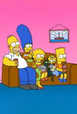 Los Simpson (T15)
