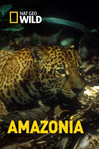 Amazonía. T1.  Episodio 1: Un mundo de agua dulce