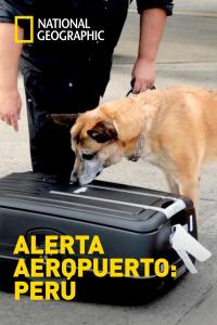 Alerta Aeropuerto: Perú. T3. Episodio 12