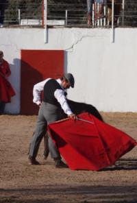 Extremadura: Tierra de toros. Extremadura: Tierra de toros