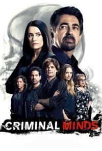 Mentes criminales. T12.  Episodio 8: Espantapájaros