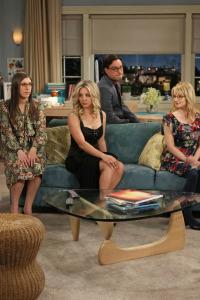 Big Bang. T6.  Episodio 7: La configuración de la cohabitación
