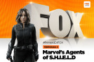 Marvel's Agents of S.H.I.E.L.D. (T3): Ep.17 El Equipo