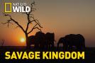 Savage Kingdom: Gana o muere