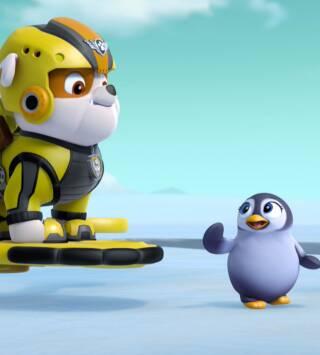 Episodio 24: La Patrulla salva al pingüino François / La Patrulla salva al hipopótamo de Dani, el Cañero