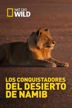 Los conquistadores del desierto de Namib