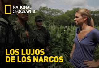 Los lujos de los narcos