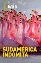 Sudamérica indómita