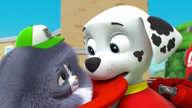 La Patrulla Canina - La Patrulla salva a los gatitos a la fuga / La Patrulla salva a mini Marshall