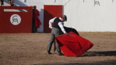 Extremadura: Tierra de toros