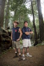 Maestros de la madera - Casa en los árboles en Beverly Hills