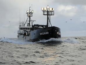 Pesca radical - Mandy