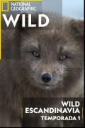 Wild Escandinavia | 1temporada
