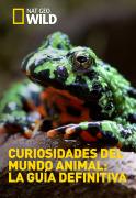 Curiosidades del mundo animal: la guía definitiva | 1temporada