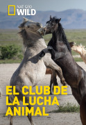El club de la lucha animal | 1temporada