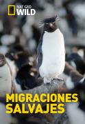 Migraciones salvajes | 1temporada