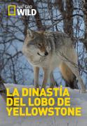 La dinastía del lobo de Yellowstone | 1temporada