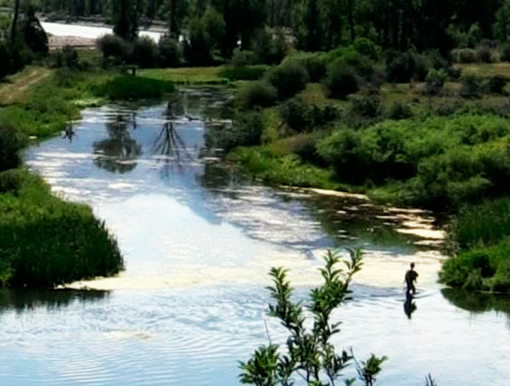 de viaje: spring creek