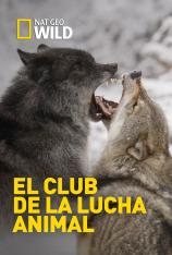 El club de la lucha animal