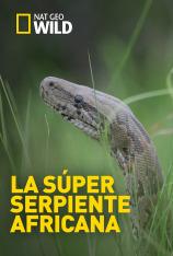 La súper serpiente africana