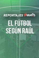 El fútbol según Raúl: Selección