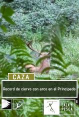 Record de ciervo con arco en el Principado