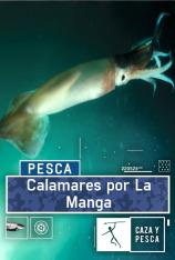 Calamares por La Manga