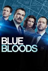 Blue Bloods (Familia de policías) (T8)