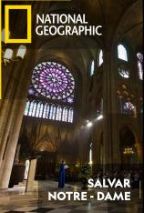 Salvar Notre Dame