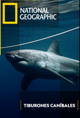 Tiburones caníbales