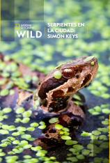 Serpientes en la ciudad: Simon Keys