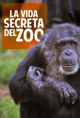 La vida secreta del Zoo