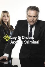 Ley y orden. Acción criminal (T10)