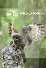 Wild Laponia