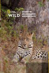Diario de un leopardo adolescente