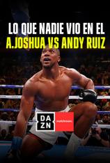 Lo que nadie vio en el Anthony Joshua vs Andy Ruiz
