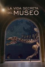 La vida secreta del museo
