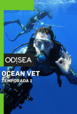 Ocean Vet