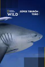 Súper tiburón toro