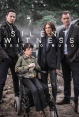 Silent Witness (Testigo mudo) (T23)