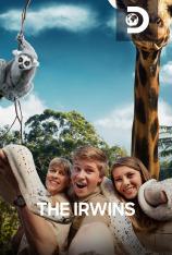The Irwins