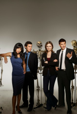 Bones (T4)